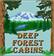 Deep Forest Cabins at Mt Rainier